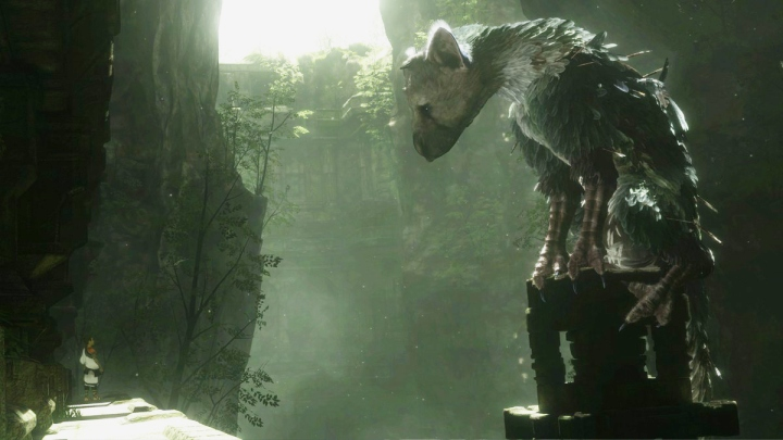 trico-ft